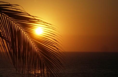 La Vida Es Viaje, 5 Cosas que No te Puedes Perder en Acapulco